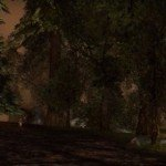 DARKFALL NEW DAWN: PERCHE' IL REBOOT?