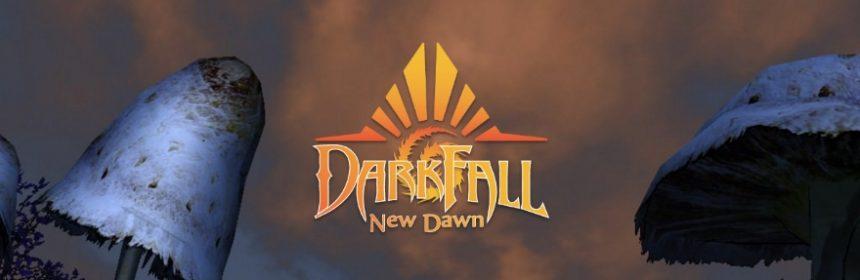 DARKFALL NEW DAWN: APERTI I TEST SERVER