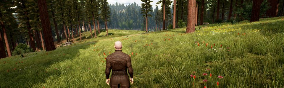 CHRONICLES OF ELYRIA: VIDEO SUL SISTEMA DI MOVIMENTO