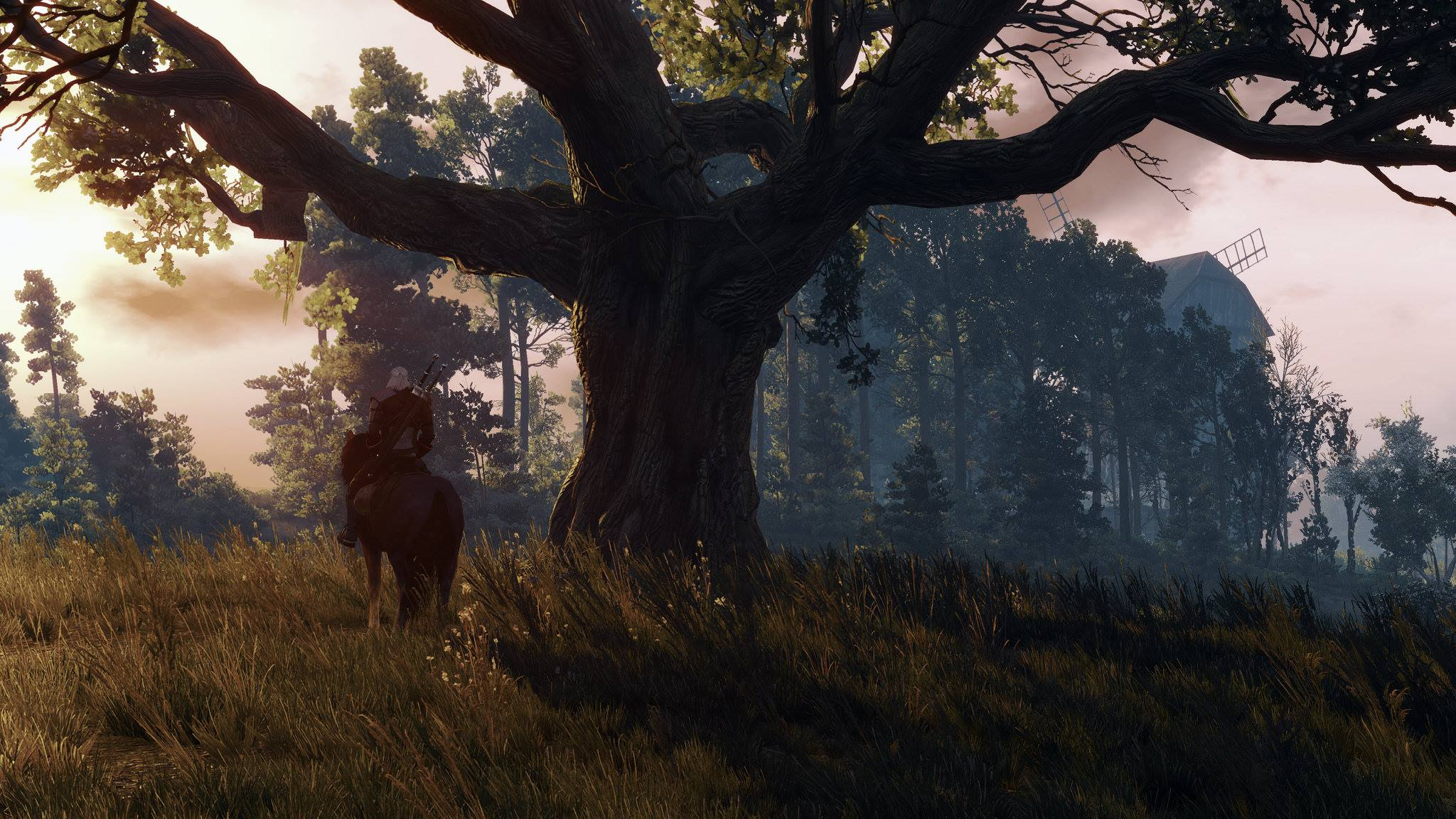 quest the witcher 3