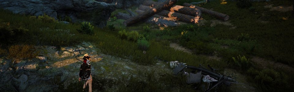 BLACK DESERT ONLINE: TUTORIAL PER NODI E WORKER – VIDEO GUIDA