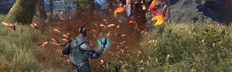 THE ELDER SCROLLS ONLINE MORROWIND: SVELATE LE ABILITA' DEL WARDEN
