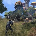 THE ELDER SCROLLS ONLINE: PATCH NOTES PER MORROWIND, COMMUNITY IN RIVOLTA