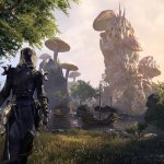 THE ELDER SCROLLS ONLINE: IN ARRIVO LA CLOSED BETA DI MORROWIND