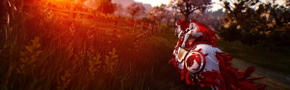 BLACK DESERT ONLINE: TUTORIAL PER FARMING E LEVELLING – VIDEO GUIDA