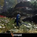 Ashes of Creation: Iniziata l'Alpha One, nuovo video gameplay
