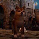 Black Desert Online: l'ultimo update aggiunge 3 pet ottenibili in-game